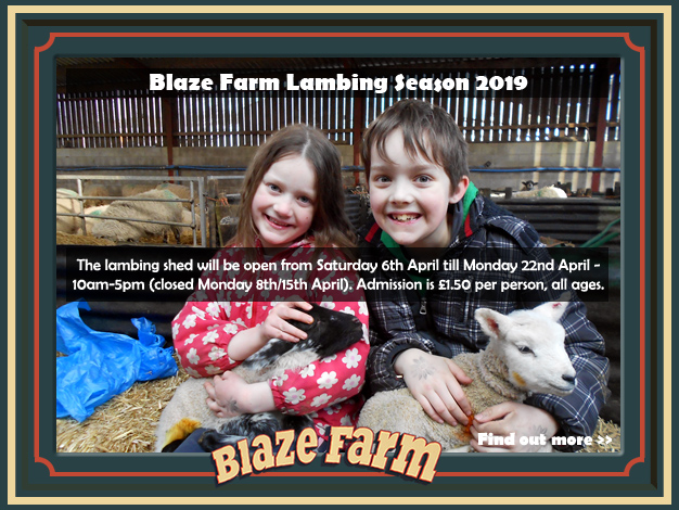 Blaze Farm Lambing Season 2019.  The lambing shed will be open from Saturday 6th April till Monday 22nd April – 10am-5pm (closed Monday 8th/15th April).  Admission £1.50 per person, all ages.